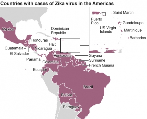 Zika in Ecuador – What you need to know